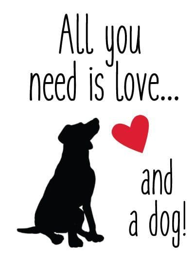 All you Need Is Love And A Dog Metal Sign 200mm x 140mm (2F)