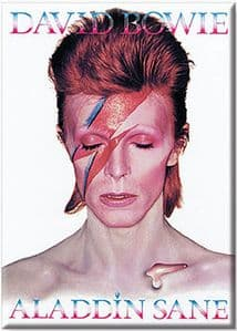 David Bowie Aladdin Sane fridge magnet  (nm)