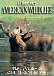 Discover American Wildlife set of 52 playing cards + jokers    (gib)