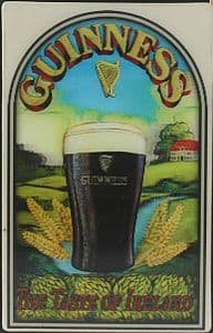Guinness 3D fridge magnet - Taste Of Ireland (sg)