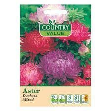Aster Duchess Mixed Seeds - Country Value