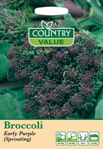 Broccoli Early Purple Sprouting Seeds (400)