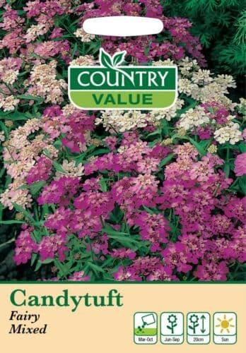 Candytuft Fairy Mixed - Country Value seeds