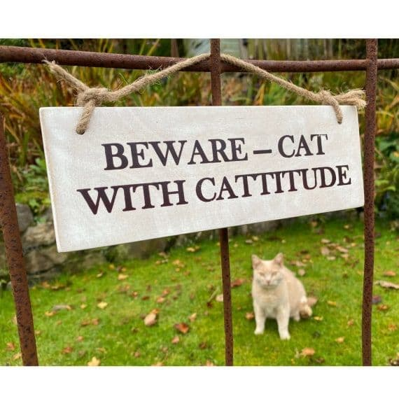 Cat with Cattitude - Garden Sign