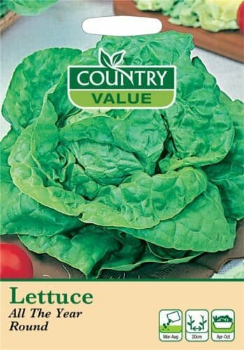 Lettuce All The Year Round Seeds (1100)