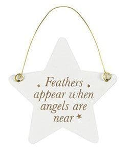 White Hanging Star - Feathers Appear
