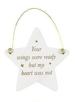 White Hanging Star - Your Wings Were Ready