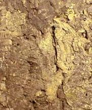 Cork Wall Tile - Colorado - Natural Cork Top - Special Size 900mm x 600mm (Pack of 2)