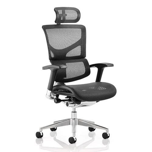Ergo-Dynamic Mesh Office Chair With Headrest