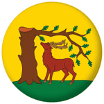 Berkshire County Flag 58mm Button Badge