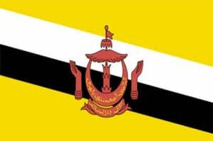 Brunei Large Country Flag - 3' x 2'.