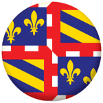 Burgundy Province Flag 25mm Pin Button Badge