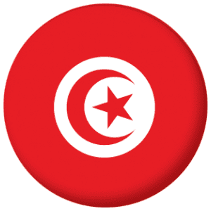 Tunisia Country Flag 58mm Keyring
