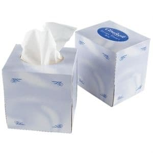 Hotel Room Tissues Cube