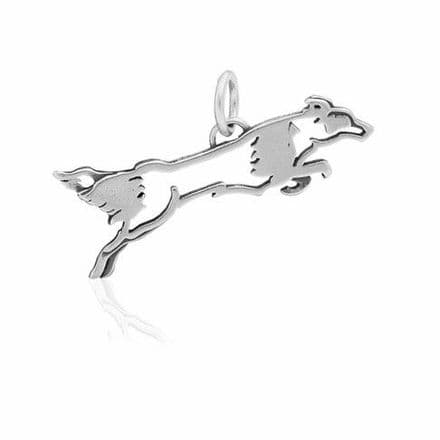 Solid Silver Dazzling Paws Border Collie Flying