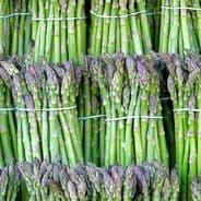 Asparagus Precoce D'Argentuil - appx 100 seeds