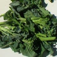 Broccoli Raab Cima Di Rapa - 25 grams - Bulk Discounts available