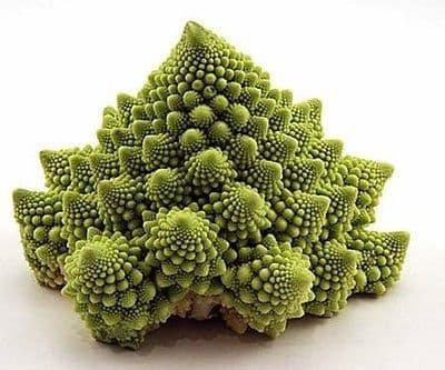 Cauliflower - Romanesco Natalino - Appx 250 seeds