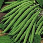 Climbing French Bean  Cobra Appx 90 Seeds