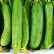 Cucumber Beth Alpha - 25 grams - Bulk Discounts available