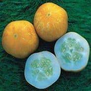 Cucumber Lemon apple - 10 grams - 500 grams