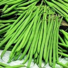Dwarf French bean - TWIN PACK 2 VARIETIES