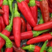 Hot Pepper Birds Eye Chilli - 1 gram - Bulk Discounts available