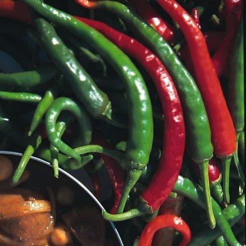 Hot Pepper Cayenne Long Slim Seeds