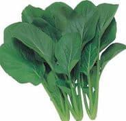 Komatsuna Red/Green 200 seeds