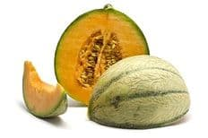 Melon Canta Charenatais - 120 seeds