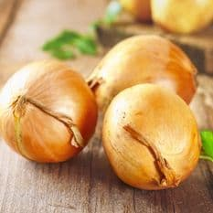 Onion Large Spanish Sweet Yellow appx 1000 seeds