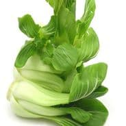 Pak Choi F1 Yuushou 200 seeds Year round production