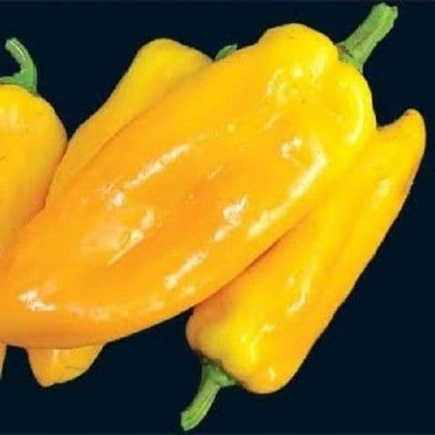 Sweet Pepper Marconi Mix - 24 seeds - Vegetables/Fruits