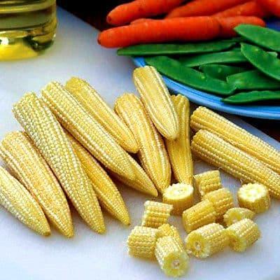 Sweetcorn F1 Minipop Min 130 seeds - Vegetables