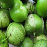 Tomatillo Verde seeds - Physalis ixocarpa - 1 gram - 100 grams