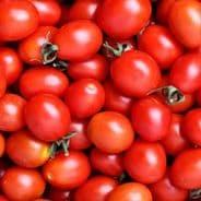 Tomato Sub Arctic Plenty - 120 seeds