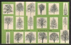 2000 'A TREASURY OF TREES'PRESTIGE BOOKLET (DX26)