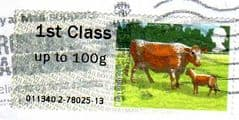 2012 1ST 'CATTLE - IRISH MOILED' FINE USED