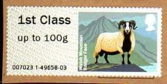 2012 1ST CLASS 'SHEEP -WELSH MOUNTAIN BADGER FACE' FINE USED