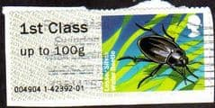2013 1ST 'FRESHWATER LIFE - LESSER SILVER WATER BEETLE'  FINE USED