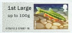 2013 1ST LARGE  'FRESHWATER LIFE 3 - MINNOW'  FINE USED
