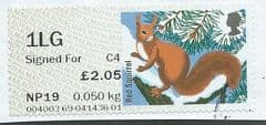 2015 1LG (SIGNED FOR) (C 4)  'FUR AND FEATHERS - RED SQUIRREL ( POSTCODED)'  FINE USED