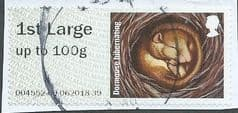 2016 1ST  LARGE  CLASS ' DORMOUSE'  FINE USED