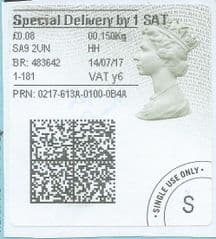 2017 SPECIAL DELIVERY BY 1 SAT ( Y 6) TYPE 4b HORIZON LABEL  (GREY/ GREEN VARIATION) FINE USED