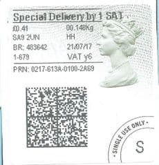 2017 SPECIAL DELIVERY BY 1 SAT ( Y 6)TYPE 4b HORIZON LABEL  (GREY/ GREEN VARIATION) FINE USED
