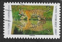 2020 (97c)(S/A) 'ANIMAL REFLECTIONS- SIBERIAN TIGER' FINE USED